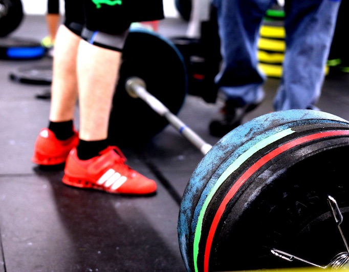 What is the best beginner workout program? | Gravitus Blog